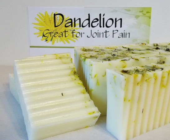All Natural Wildharvested Dandelion Soap-dandelion soap, facial soap, natural soap oil infused soap, dandelion infused soap